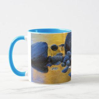 Mug Les Etats-Unis, Washington, ressortissant