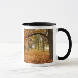 Mug Les Etats-Unis, Washington, Spokane, parc de