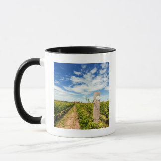 Mug Les Etats-Unis, Washington, Walla Walla. Cabernet