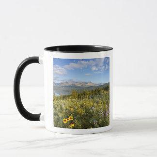Mug Les fleurs sauvages de prairie et abaissent le lac