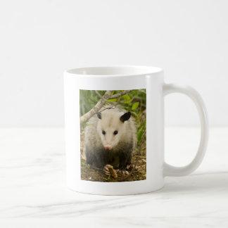 Mug Les opossums sont jolis - opossum Didelphimorphia