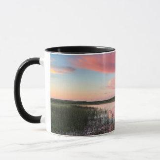 Mug L'étang de prairie reflète les nuages brillants de