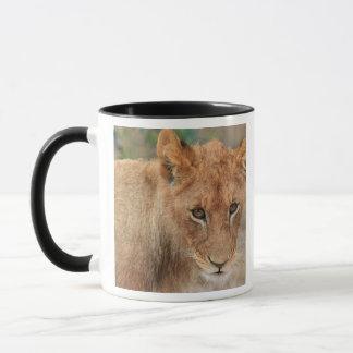 Mug Lion CUB
