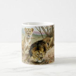 Mug Lion et lionne
