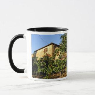 Mug L'Italie, Toscane, Greve. Scènes de vin de fin