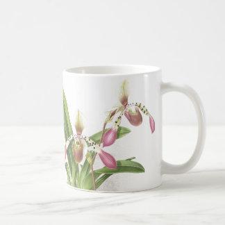 Mug L'orchidée de pantoufle botanique de Ladys fleurit