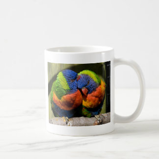 Mug Lorikeets dans l'amour