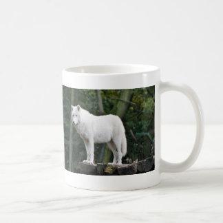 Mug Loup blanc sauvage