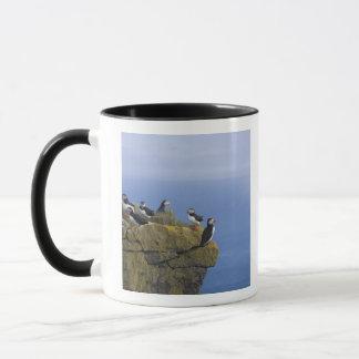 Mug Macareux atlantiques (arctica de Fratercula) sur