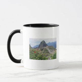 Mug Machu Picchu, Pérou