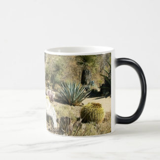 Mug Magic Cactus