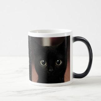 Mug Magic Chats noirs