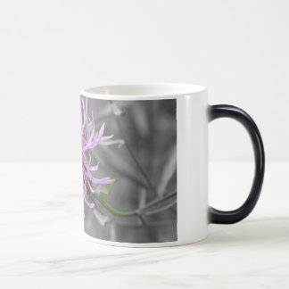 Mug Magic Gaffez l'abeille