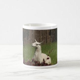 Mug Magic Lama blanc
