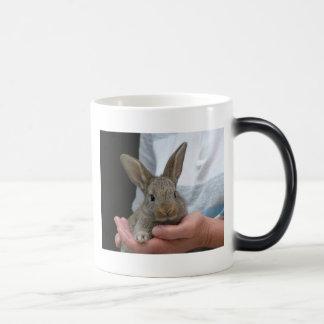 Mug Magic lapin