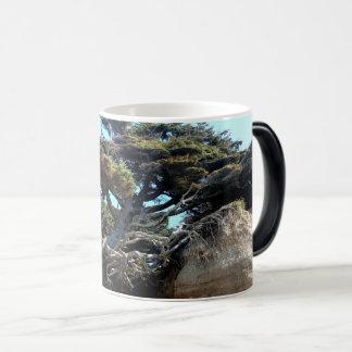 Mug Magic L'arbre balayé par le vent de la côte de