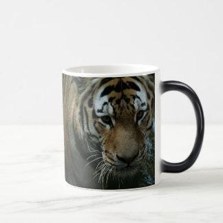 Mug Magic L'oeil du tigre