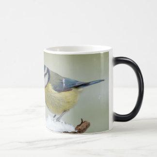 Mug Magic Oiseau sauvage renversant de mésange bleue dans la
