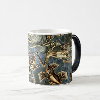 Mug Magic Variété d'Ernst Haeckel de grenouilles exotiques :