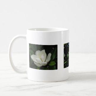 Mug Magnolias du sud