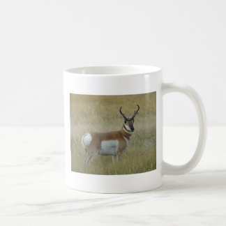 Mug Mâle d'antilope d'A0001 Pronghorn