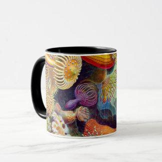 Mug Marine d'actinies d'Ernst Haeckel : Actiniae