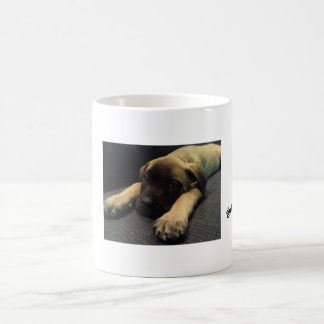 Mug mastiff obtenu ?