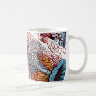 Mug Méduses d'Ernst Haeckel Discomedusae