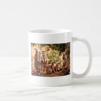 Mug Meerkats mignon