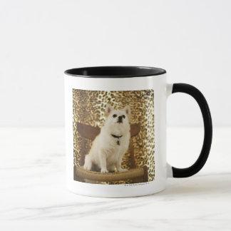 Mug Mélange de Pomeranian