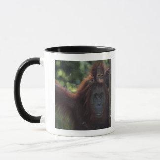 Mug Mère d'orang-outan avec le bébé