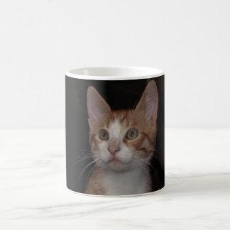 Mug Minou rouge - jeune chat, arrière - plan noir