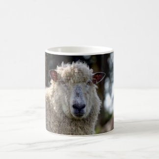 Mug Moutons