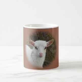 Mug Moutons - agneau blanc