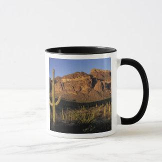 Mug Na, Etats-Unis, Arizona. Ressortissant 2 de cactus