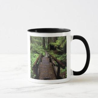 Mug Na, Etats-Unis, la Californie, séquoias de