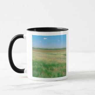 Mug NA, ETATS-UNIS, NE. Les prairies s'approchent