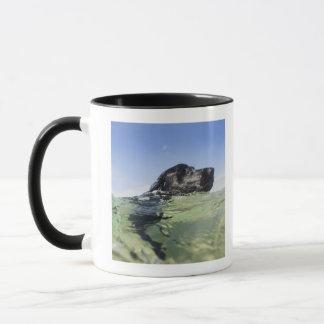 Mug Natation de chien dans l'eau