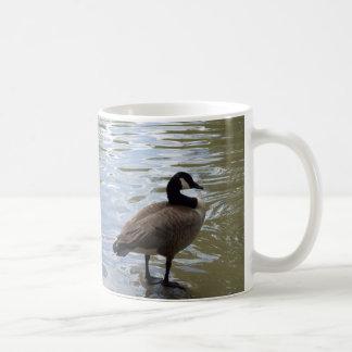 Mug Oie du Canada sur la roche