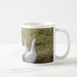 Mug Oies blanches
