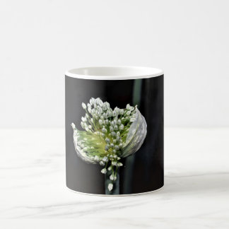 Mug Oignon fleurissant de ressort