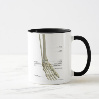Mug Os du pied 6