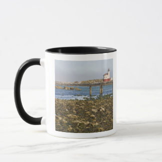 Mug OU, côte de l'Orégon, Bandon, rivière de Coquille