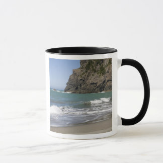Mug OU, côte de l'Orégon, plage de Whaleshead, sud
