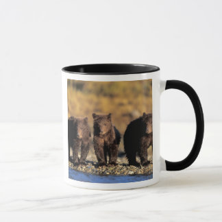 Mug Ours gris, ours brun, petits animaux,