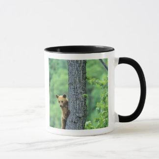 Mug Ours noir coloré par cannelle dans l'arbre dedans
