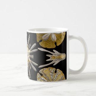 Mug Oursins d'Ernst Haeckel Echinidea
