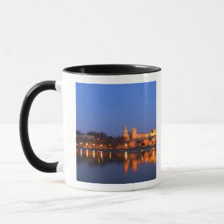 Mug Palace de pape à Avignon et le Rhône à