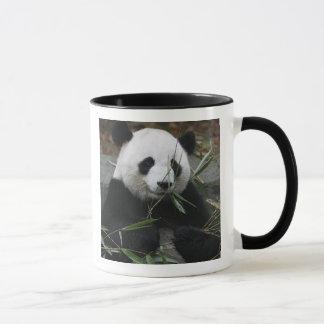 Mug Pandas géants à la protection de panda géant et