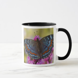 Mug Papillon tropical 3 de Sammamish Washington